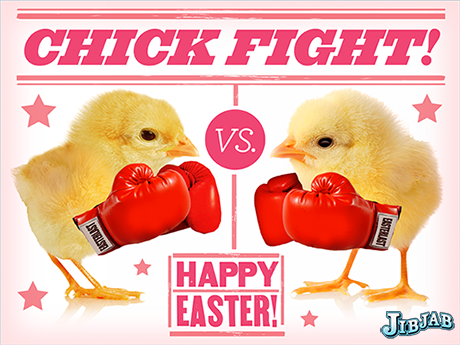 Chickfight